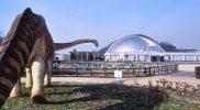 笠岡市カブトガニ博物館・恐竜公園